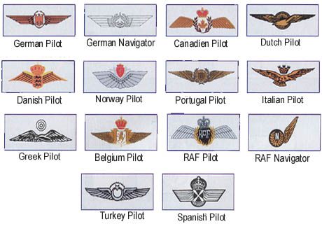 Nato Pilot Wings (Trained with Air Force pilots)
